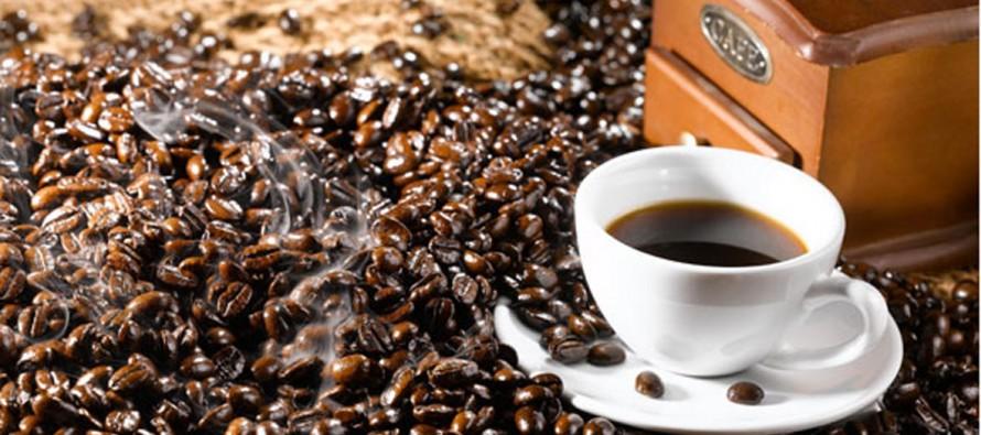 기호식품/ 커피