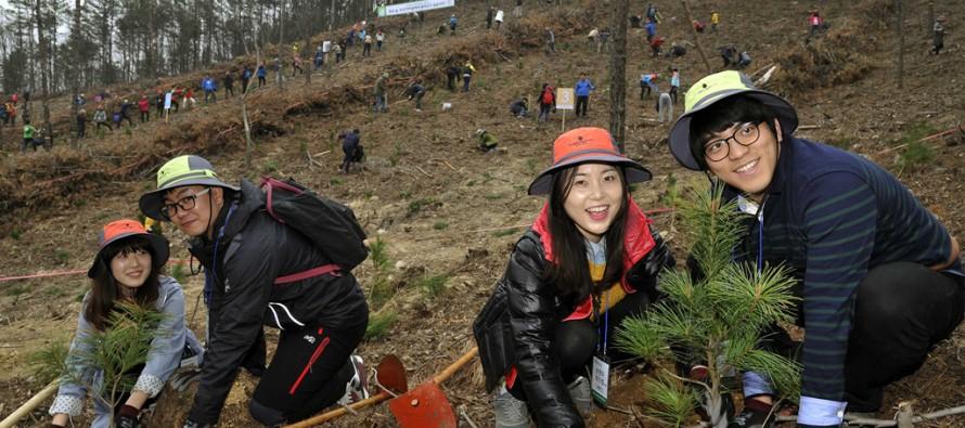 유한킴벌리, 2016 신혼부부 나무심기 참가자 모집