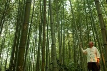포토/담양 죽녹원 대나무길…대나무 향기따라 떠나는 여행,  담양 죽녹원